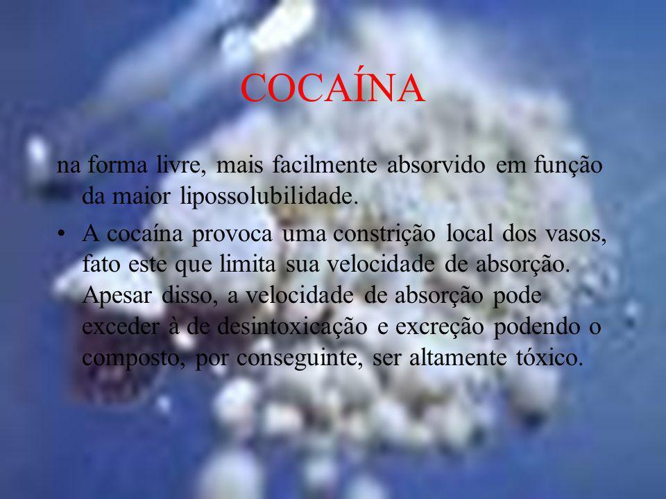 COCAÍNA na forma livre, mais facilmente absorvido em função da maior lipossolubilidade. A cocaína provoca uma constrição local dos vasos, fato este qu