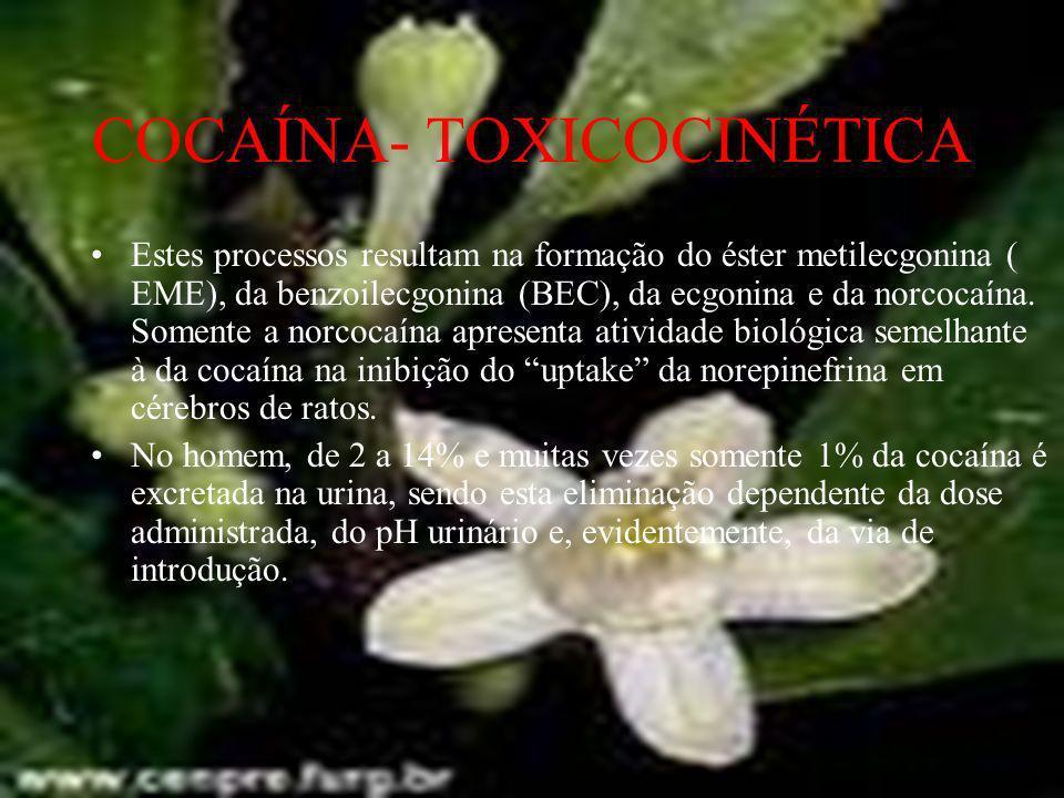 COCAÍNA- TOXICIDADE A cocaína é um anestésico local com propriedades simpatomiméticas.
