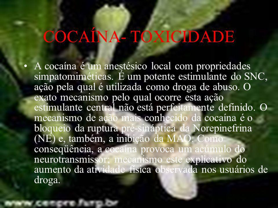 COCAÍNA- TOXICIDADE A cocaína é um anestésico local com propriedades simpatomiméticas. É um potente estimulante do SNC, ação pela qual é utilizada com
