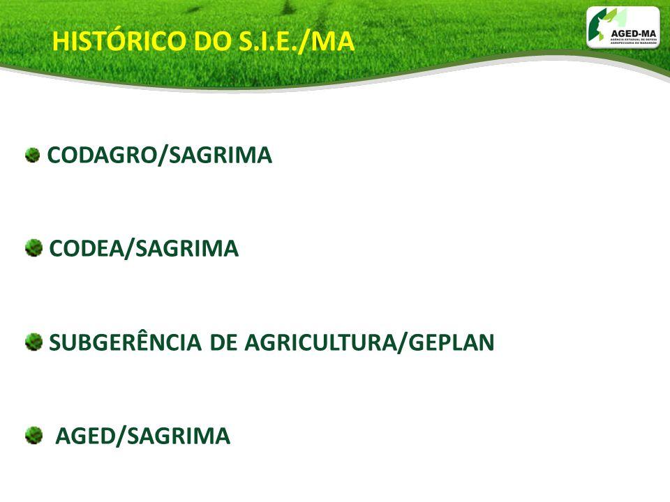 CODAGRO/SAGRIMA CODEA/SAGRIMA SUBGERÊNCIA DE AGRICULTURA/GEPLAN AGED/SAGRIMA HISTÓRICO DO S.I.E./MA