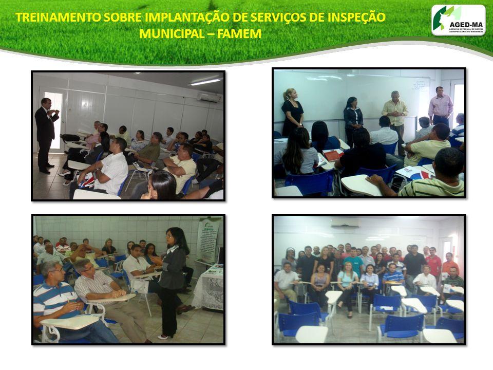 TREINAMENTO SOBRE IMPLANTAÇÃO DE SERVIÇOS DE INSPEÇÃO MUNICIPAL – FAMEM