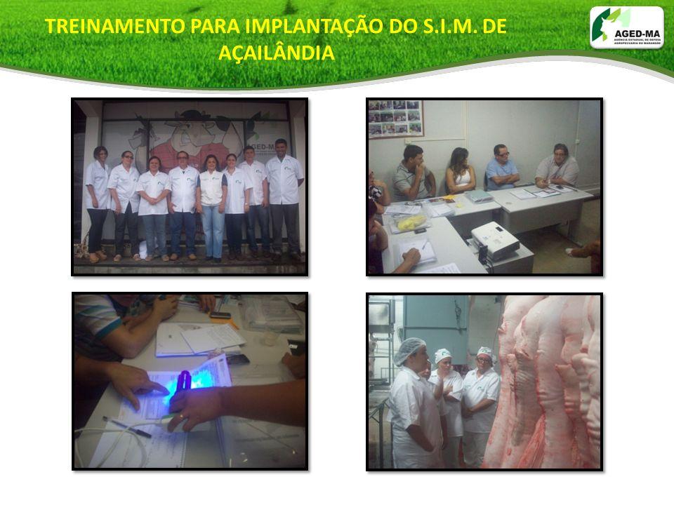 TREINAMENTO PARA IMPLANTAÇÃO DO S.I.M. DE AÇAILÂNDIA