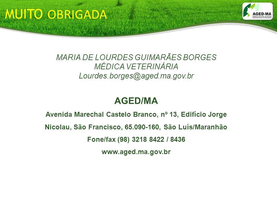 MUITO OBRIGADA MARIA DE LOURDES GUIMARÃES BORGES MÉDICA VETERINÁRIA Lourdes.borges@aged.ma.gov.br AGED/MA Avenida Marechal Castelo Branco, nº 13, Edif