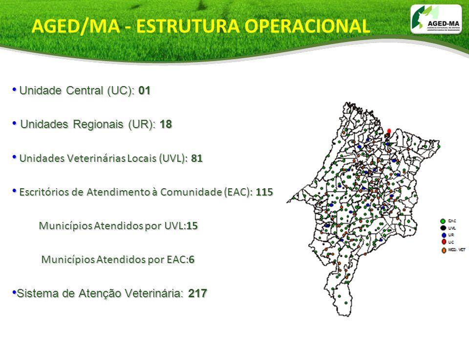 AGED/MA - ESTRUTURA OPERACIONAL Unidade Central (UC): 01 Unidade Central (UC): 01 Unidades Regionais (UR): 18 Unidades Regionais (UR): 18 Unidades Vet