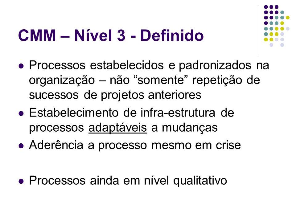 Processos estabelecidos e padronizados na organização – não somente repetição de sucessos de projetos anteriores Estabelecimento de infra-estrutura de