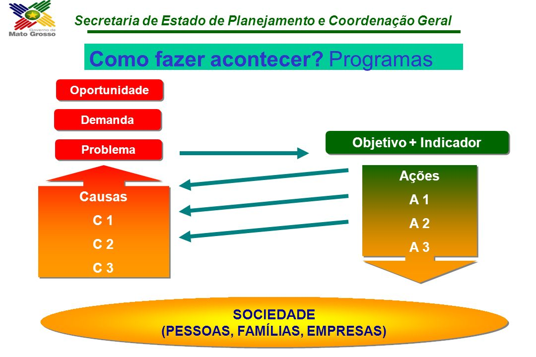 Secretaria de Estado de Planejamento e Coordenação Geral Como fazer acontecer? Programas Problema Objetivo + Indicador Causas C 1 C 2 C 3 Causas C 1 C