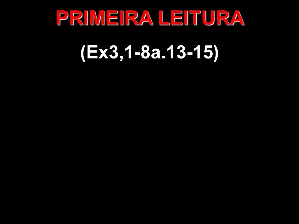 PRIMEIRA LEITURA (Ex3,1-8a.13-15)