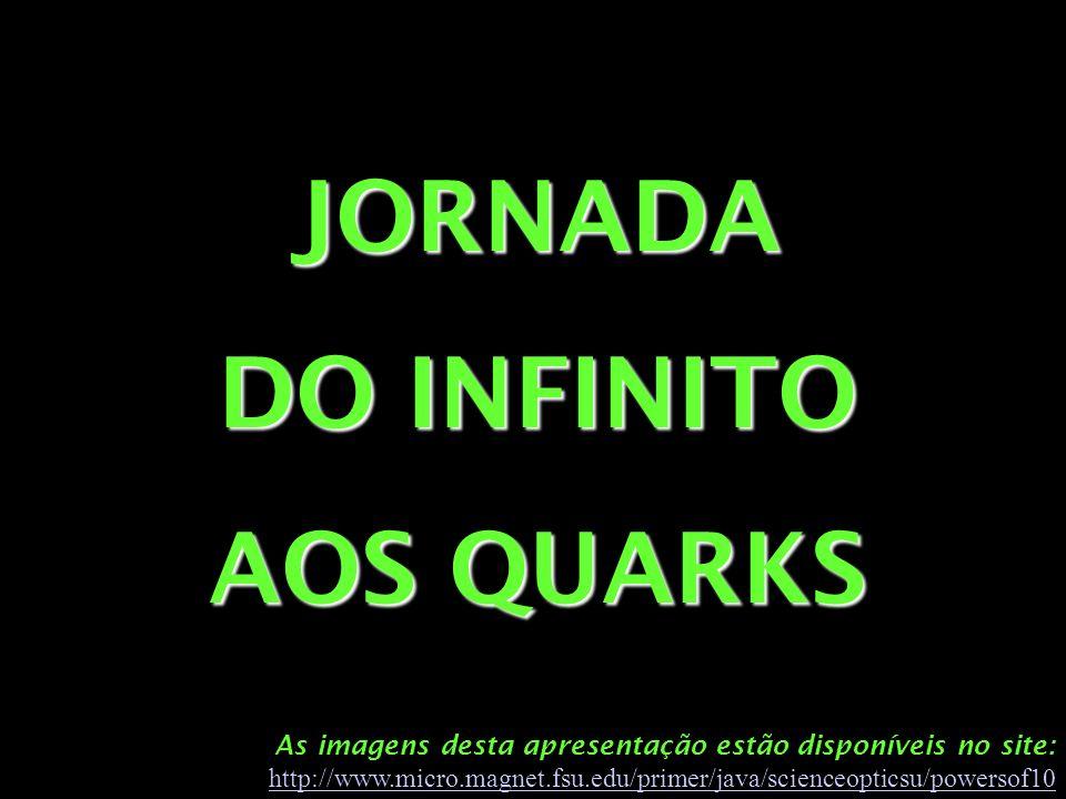 As imagens desta apresentação estão disponíveis no site: http://www.micro.magnet.fsu.edu/primer/java/scienceopticsu/powersof10 http://www.micro.magnet.fsu.edu/primer/java/scienceopticsu/powersof10 JORNADA DO INFINITO AOS QUARKS