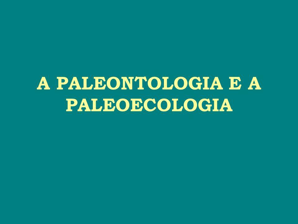 A PALEONTOLOGIA E A PALEOECOLOGIA # Lugar de vida dos organismos marinhos: Região Nerítica (Sub-litorânea) corresponde a área da plataforma continental (faixa de suave declínio, até cerca de 200 m de profundidade).