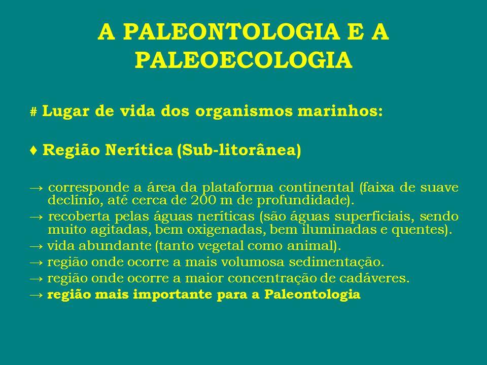 A PALEONTOLOGIA E A PALEOECOLOGIA # Lugar de vida dos organismos marinhos: Região Nerítica (Sub-litorânea) corresponde a área da plataforma continenta