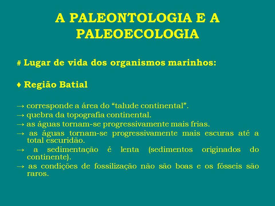 A PALEONTOLOGIA E A PALEOECOLOGIA # Lugar de vida dos organismos marinhos: Região Batial corresponde a área do talude continental. quebra da topografi