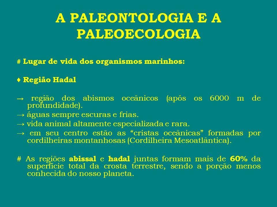 A PALEONTOLOGIA E A PALEOECOLOGIA # Lugar de vida dos organismos marinhos: Região Hadal região dos abismos oceânicos (após os 6000 m de profundidade).