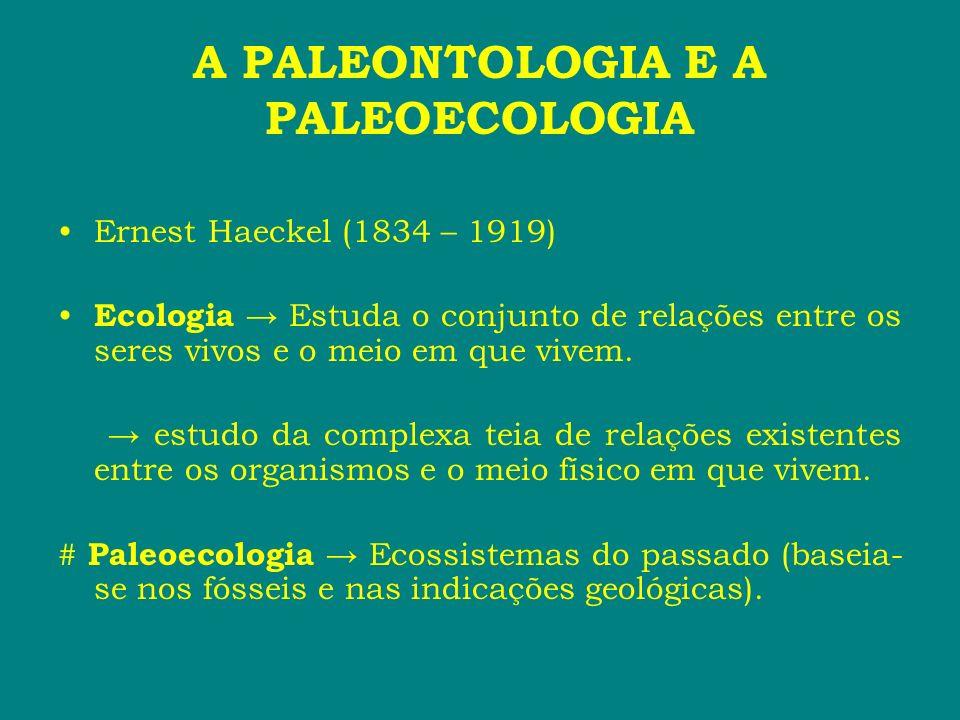 A PALEONTOLOGIA E A PALEOECOLOGIA Principais conceitos ecológicos: # Ambiente meio físico que inclui as condições abióticas e o conjunto biótico no qual vive um determinado organismo.