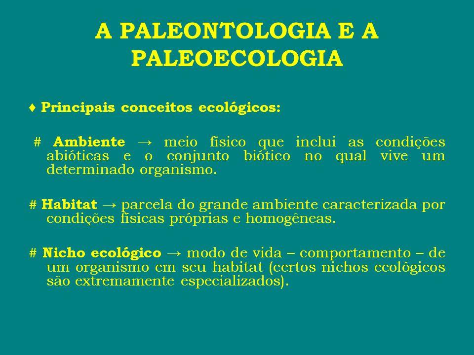 A PALEONTOLOGIA E A PALEOECOLOGIA Principais conceitos ecológicos: # Ambiente meio físico que inclui as condições abióticas e o conjunto biótico no qu