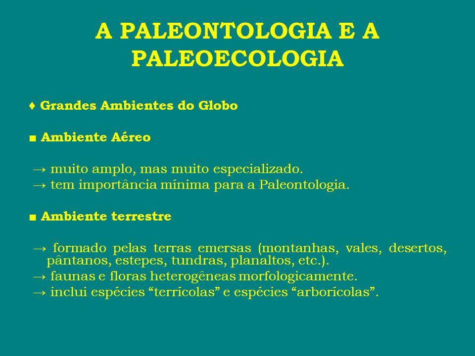 A PALEONTOLOGIA E A PALEOECOLOGIA Grandes Ambientes do Globo Ambiente Aéreo muito amplo, mas muito especializado. tem importância mínima para a Paleon