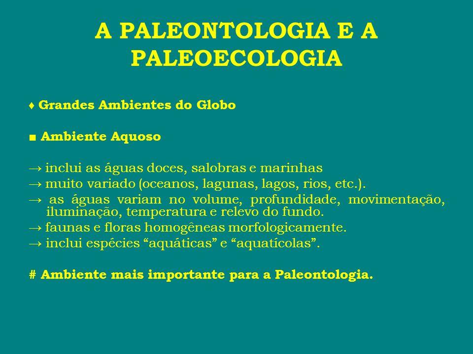 A PALEONTOLOGIA E A PALEOECOLOGIA Grandes Ambientes do Globo Ambiente Aquoso inclui as águas doces, salobras e marinhas muito variado (oceanos, laguna