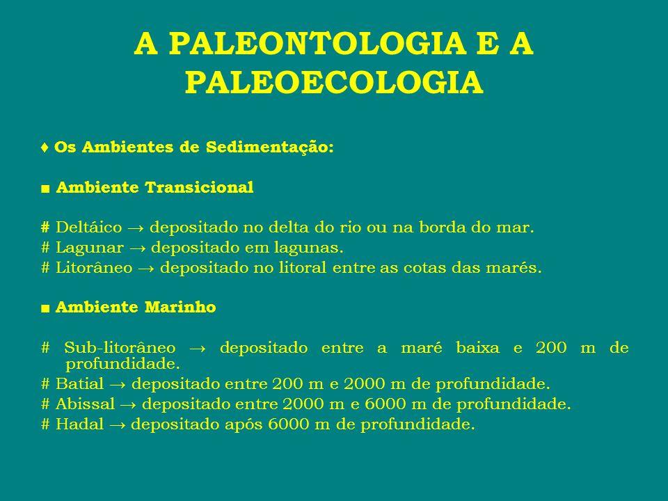 A PALEONTOLOGIA E A PALEOECOLOGIA # As rochas variam de tipo devido as mudanças nas condições ambientais...