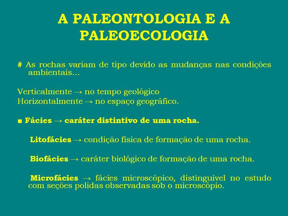 A PALEONTOLOGIA E A PALEOECOLOGIA # As rochas variam de tipo devido as mudanças nas condições ambientais... Verticalmente no tempo geológico Horizonta