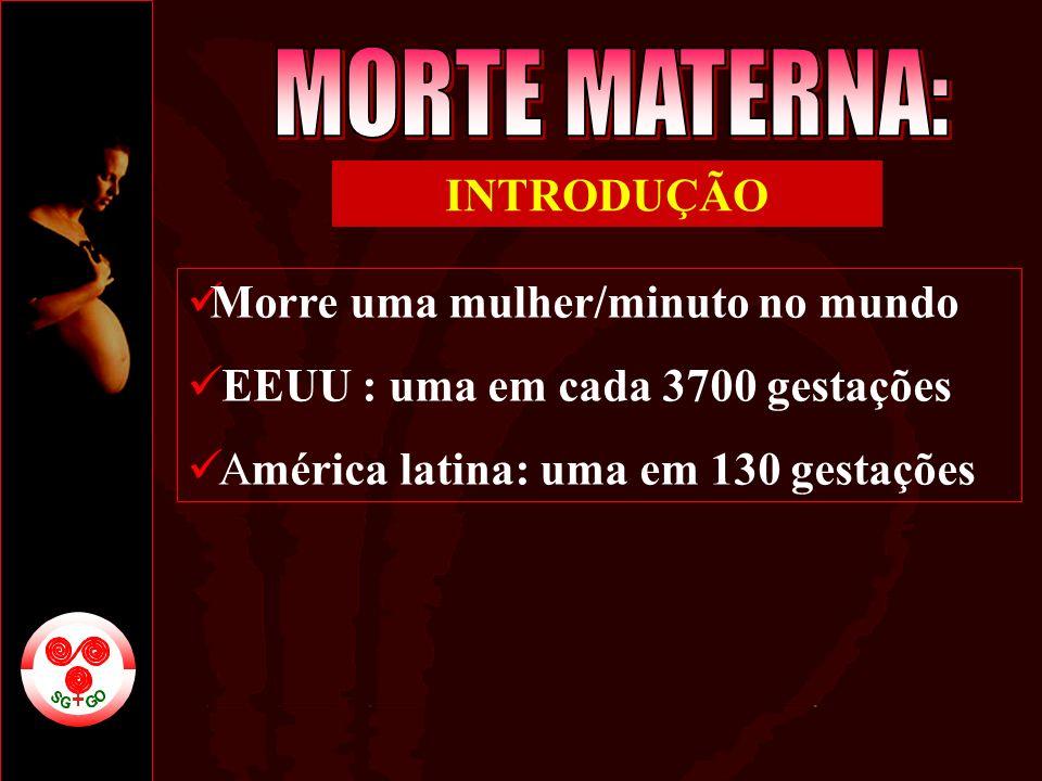 Morre uma mulher/minuto no mundo EEUU : uma em cada 3700 gestações América latina: uma em 130 gestações INTRODUÇÃO