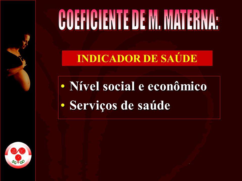Nível social e econômico Serviços de saúde Nível social e econômico Serviços de saúde INDICADOR DE SAÚDE