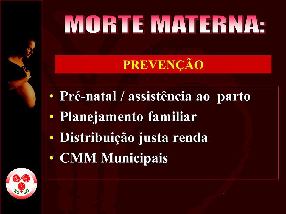 Pré-natal / assistência ao parto Planejamento familiar Distribuição justa renda CMM Municipais Pré-natal / assistência ao parto Planejamento familiar