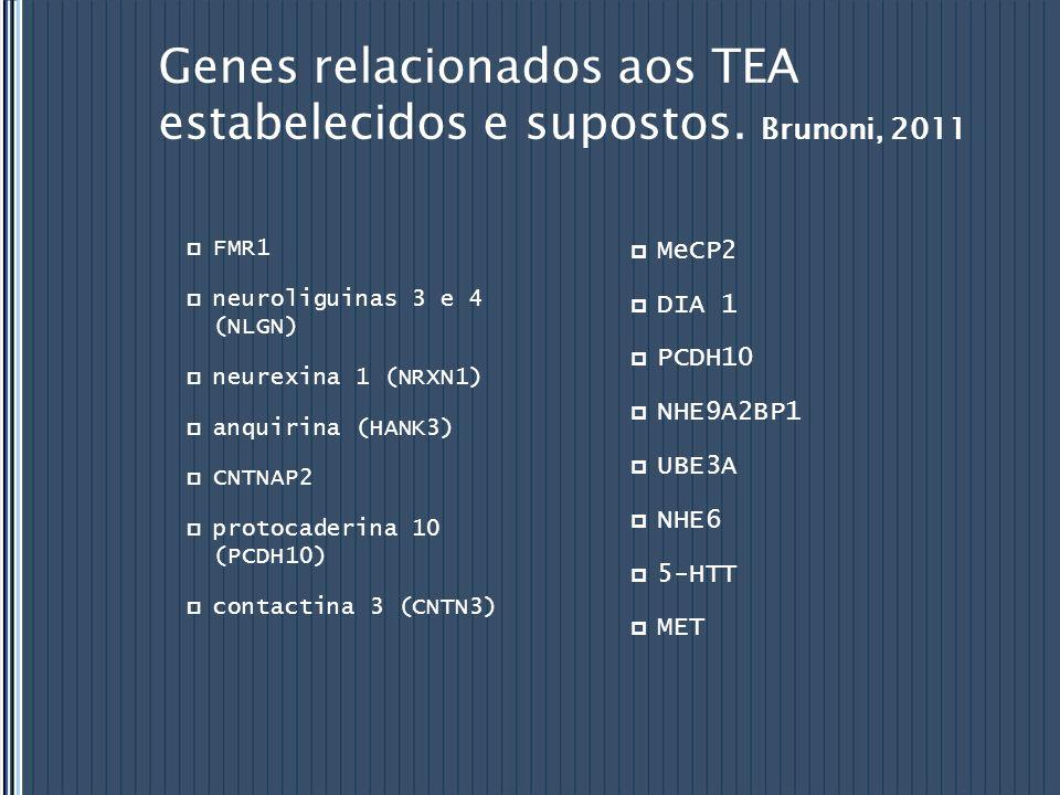 Genes relacionados aos TEA estabelecidos e supostos. Brunoni, 2011 FMR1 neuroliguinas 3 e 4 (NLGN) neurexina 1 (NRXN1) anquirina (HANK3) CNTNAP2 proto