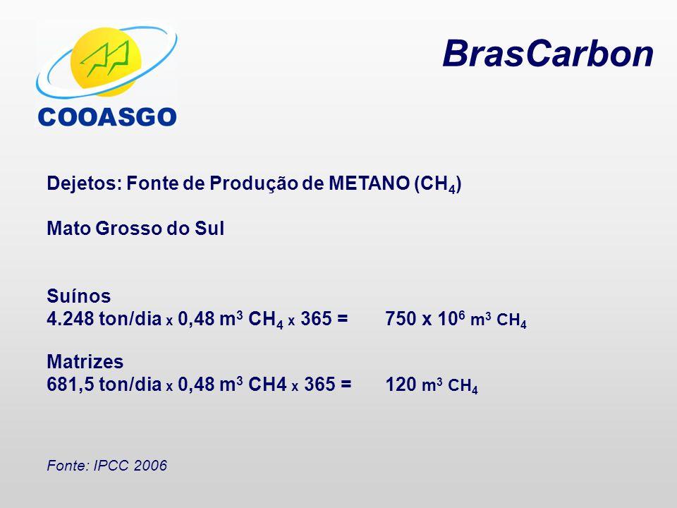 BrasCarbon Dejetos: Fonte de Produção de METANO (CH 4 ) Mato Grosso do Sul Suínos 4.248 ton/dia x 0,48 m 3 CH 4 x 365 =750 x 10 6 m 3 CH 4 Matrizes 68
