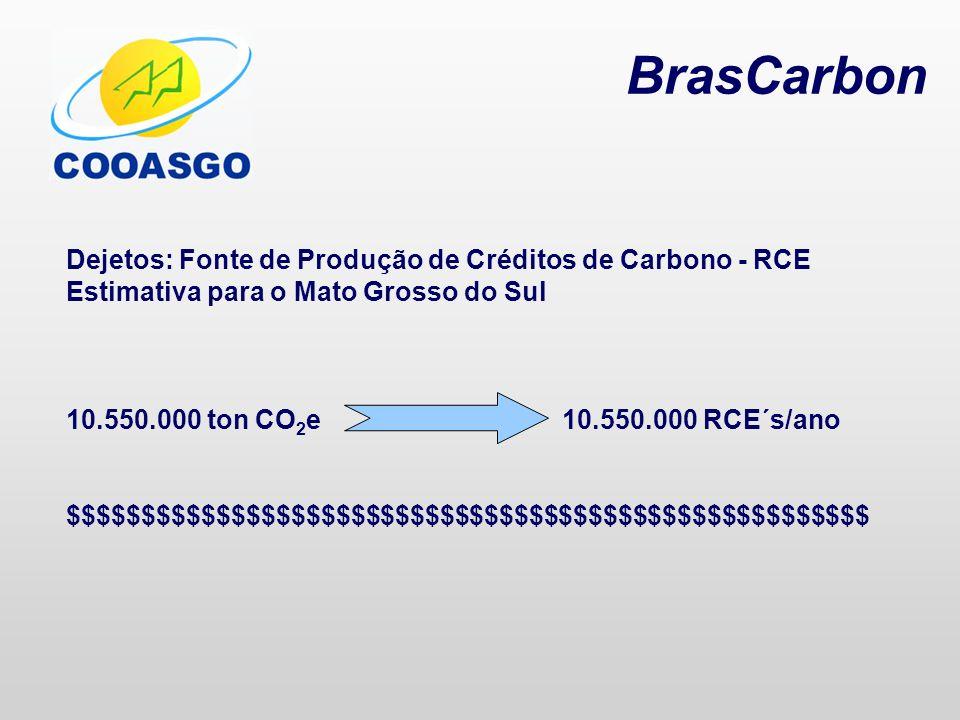BrasCarbon Dejetos: Fonte de Produção de Créditos de Carbono - RCE Estimativa para o Mato Grosso do Sul 10.550.000 ton CO 2 e 10.550.000 RCE´s/ano $$$