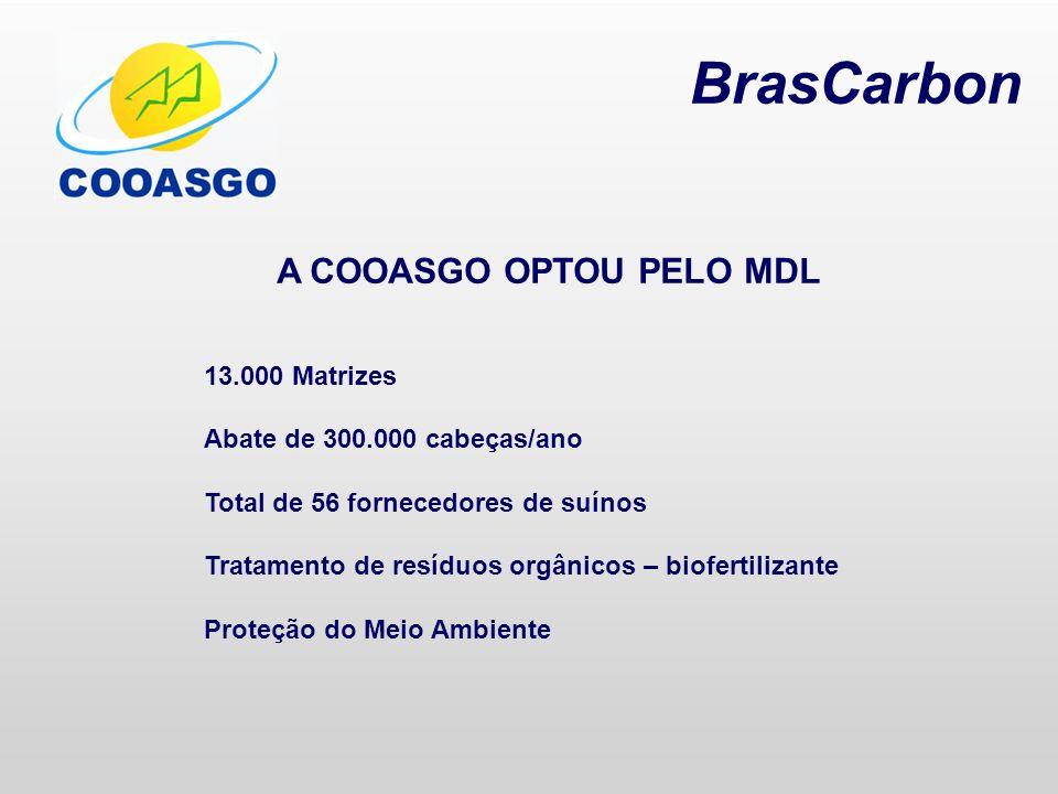 A COOASGO OPTOU PELO MDL 13.000 Matrizes Abate de 300.000 cabeças/ano Total de 56 fornecedores de suínos Tratamento de resíduos orgânicos – biofertili