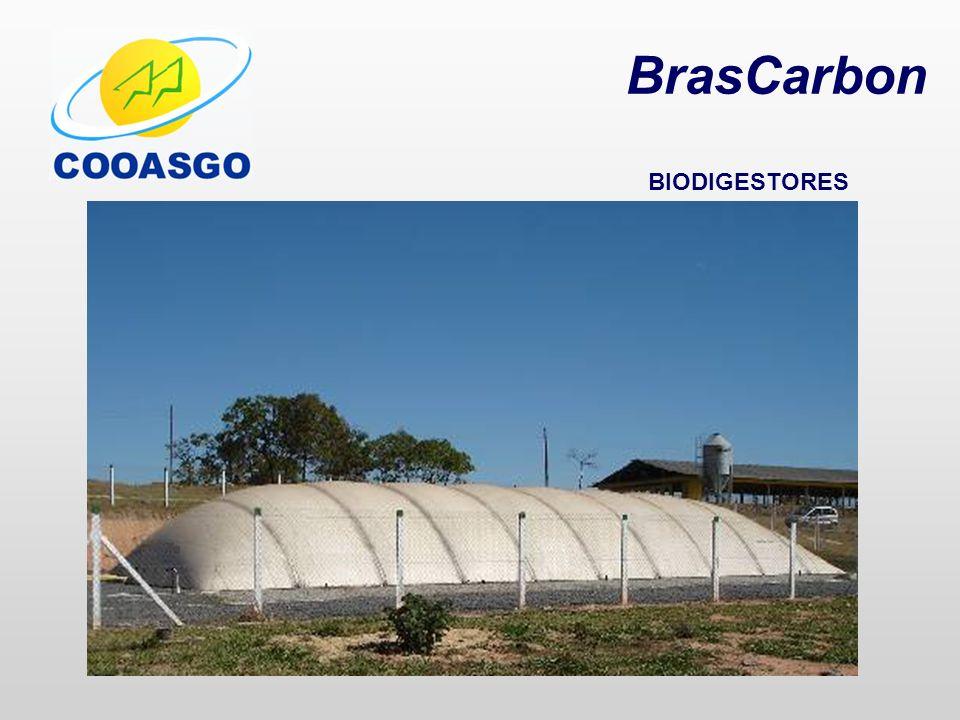 BrasCarbon BIODIGESTORES