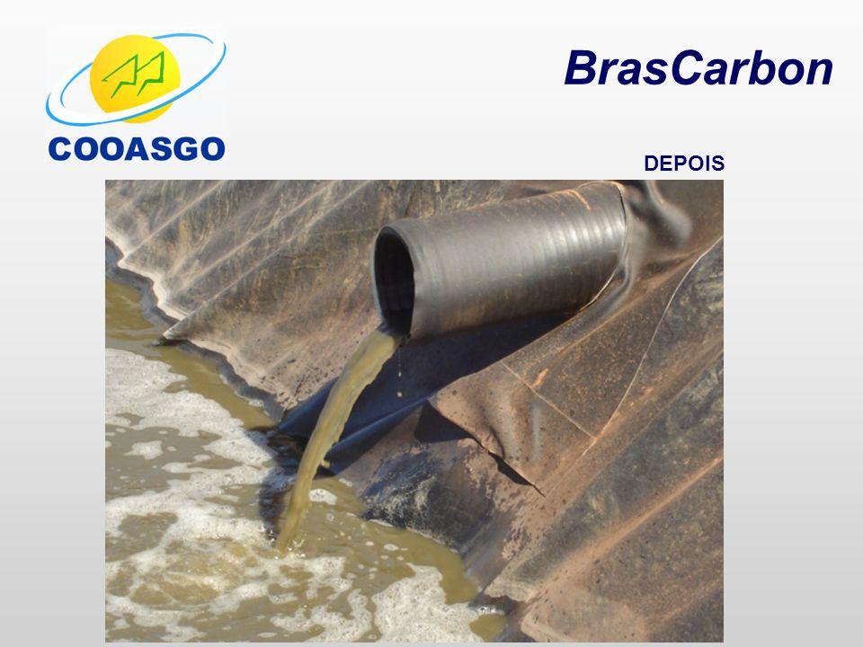BrasCarbon DEPOIS