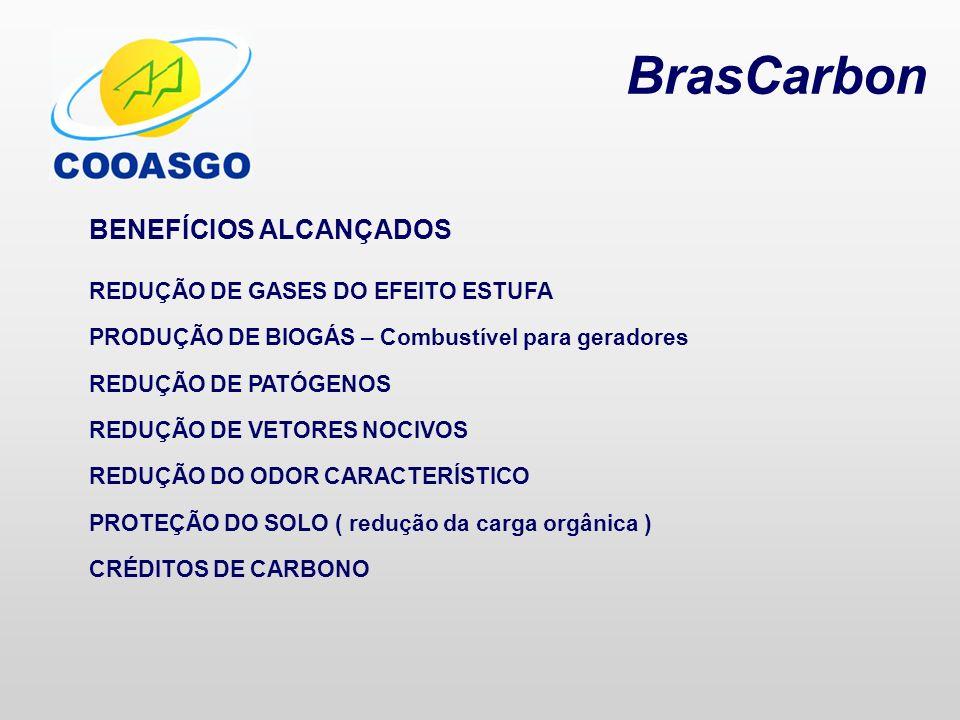 BrasCarbon BENEFÍCIOS ALCANÇADOS REDUÇÃO DE GASES DO EFEITO ESTUFA PRODUÇÃO DE BIOGÁS – Combustível para geradores REDUÇÃO DE PATÓGENOS REDUÇÃO DE VET
