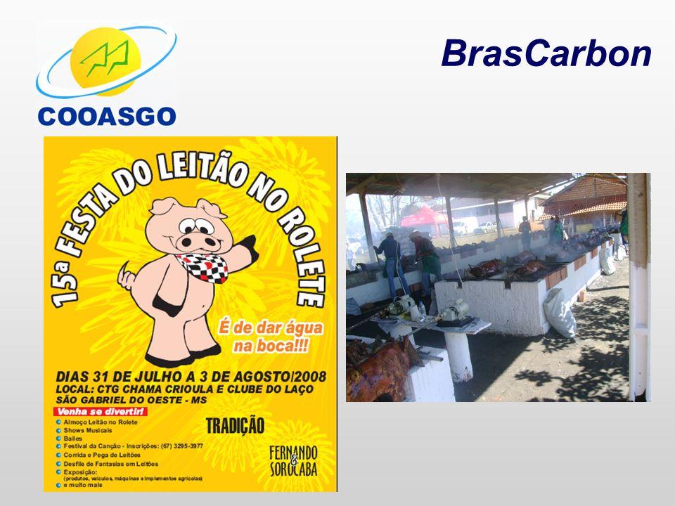 BrasCarbon PROJETO MDL VERIFICAÇÃO DA LINHA DE BASE VERIFICAÇÃO DA DOCUMENTAÇÃO LEVANTAMENTO DO NÚMERO DE ANIMAIS CÁLCULO DA ESTIMATIVA DE RCE´S DIMENSIONAMENTO DO PROJETO AVALIAÇÃO / APROVAÇÃO FINANCEIRA PREPARAÇÃO DO DCP ERPA CONSTRUÇÃO