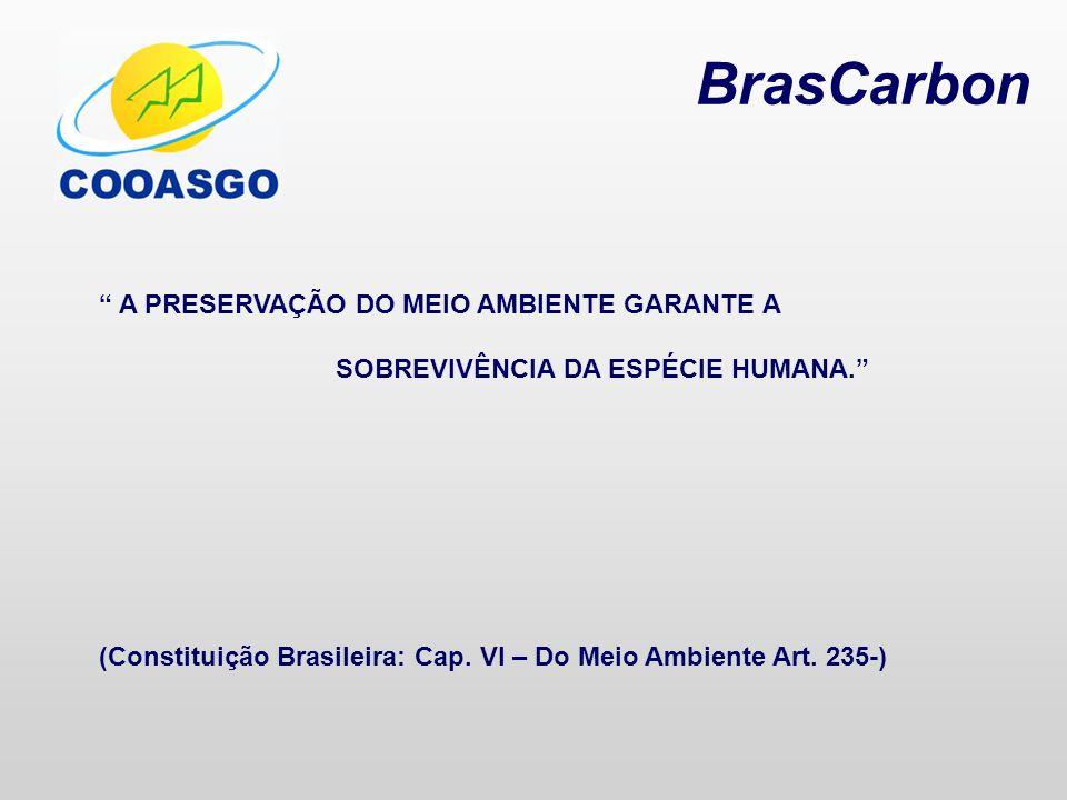 BrasCarbon A PRESERVAÇÃO DO MEIO AMBIENTE GARANTE A SOBREVIVÊNCIA DA ESPÉCIE HUMANA. (Constituição Brasileira: Cap. VI – Do Meio Ambiente Art. 235-)