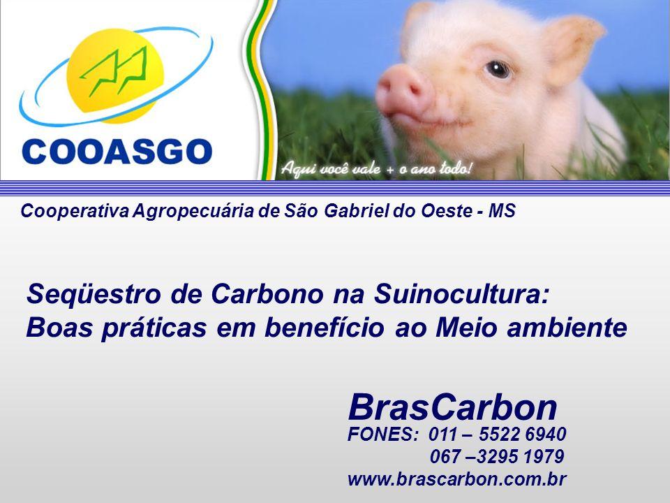 Seqüestro de Carbono na Suinocultura: Boas práticas em benefício ao Meio ambiente BrasCarbon Cooperativa Agropecuária de São Gabriel do Oeste - MS FON