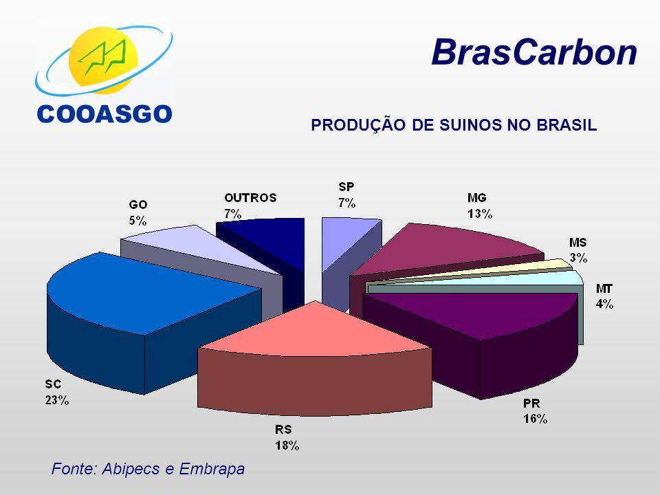 BrasCarbon Produção de Suínos (em mil cabeças) SC 8.737 27% RS 5.800 18% PR 5.084 16% MG 4.277 13% SP 2.262 7% GO 1.459 5% MT 1.416 4% MS 867 3% Outros 2.108 7% Total 32.010 Fonte: Abipecs e Embrapa (2007)