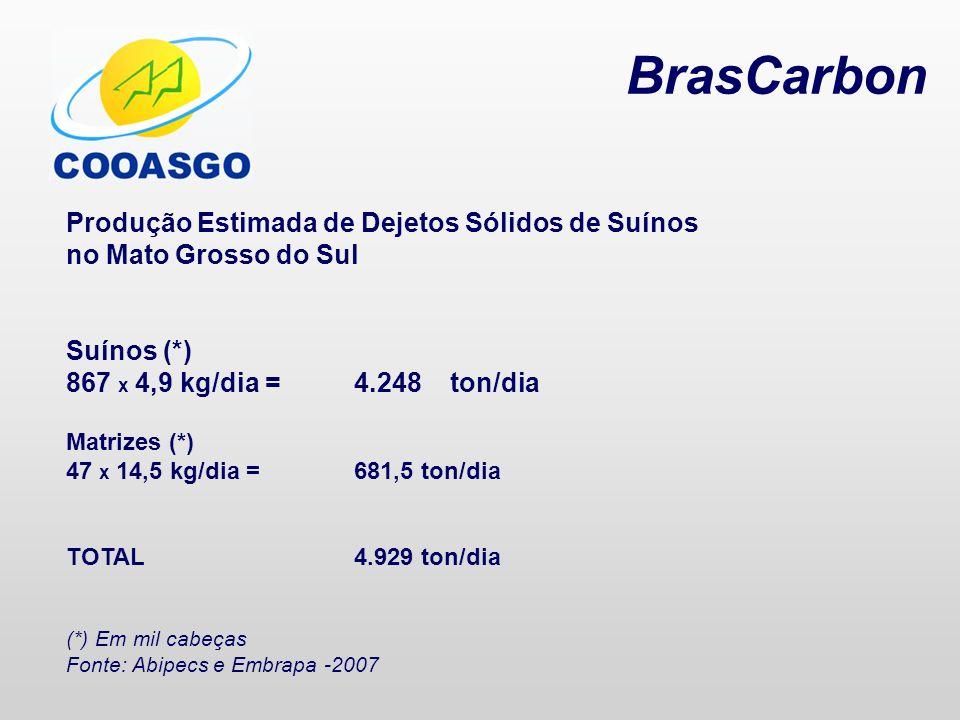 BrasCarbon Produção Estimada de Dejetos Sólidos de Suínos no Mato Grosso do Sul Suínos (*) 867 x 4,9 kg/dia =4.248ton/dia Matrizes (*) 47 x 14,5 kg/di