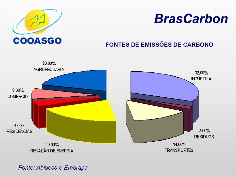 BrasCarbon Dejetos: Fonte de Produção de METANO (CH 4 ) Mato Grosso do Sul Suínos 4.248 ton/dia x 0,48 m 3 CH 4 x 365 =750 x 10 6 m 3 CH 4 Matrizes 681,5 ton/dia x 0,48 m 3 CH4 x 365 =120 m 3 CH 4 Fonte: IPCC 2006