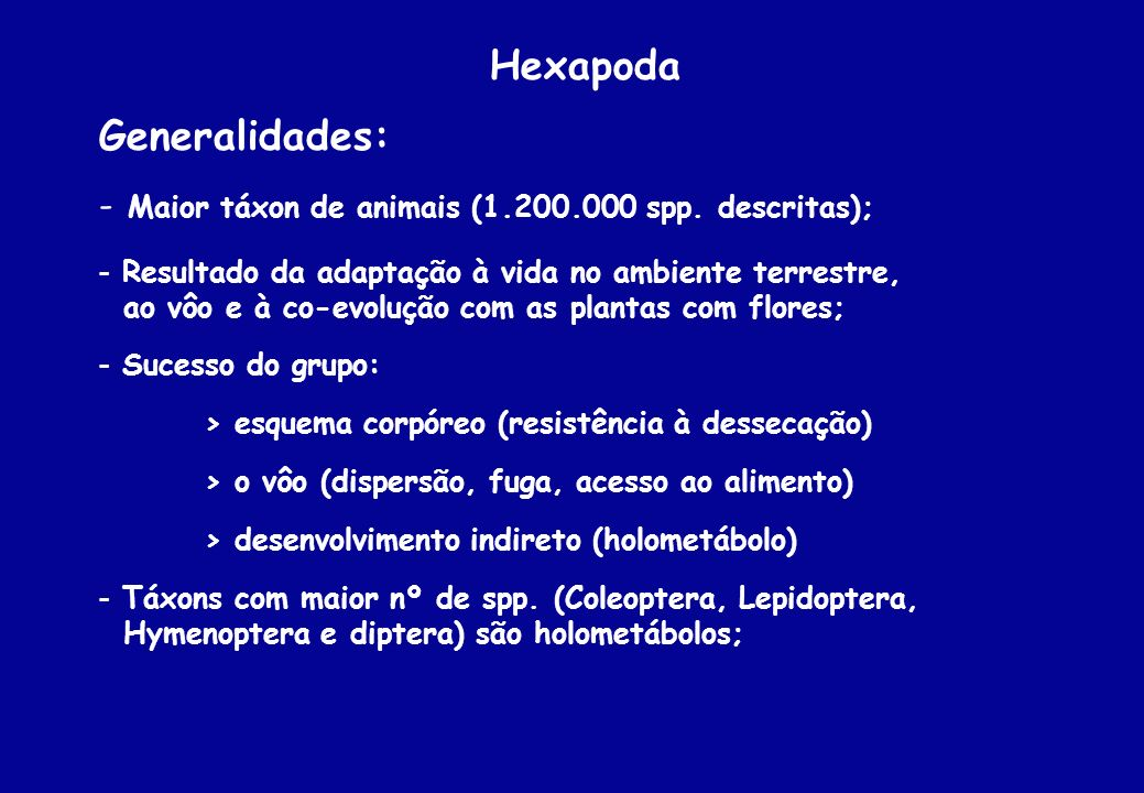 Hexapoda Generalidades: - Maior táxon de animais (1.200.000 spp. descritas); - Resultado da adaptação à vida no ambiente terrestre, ao vôo e à co-evol