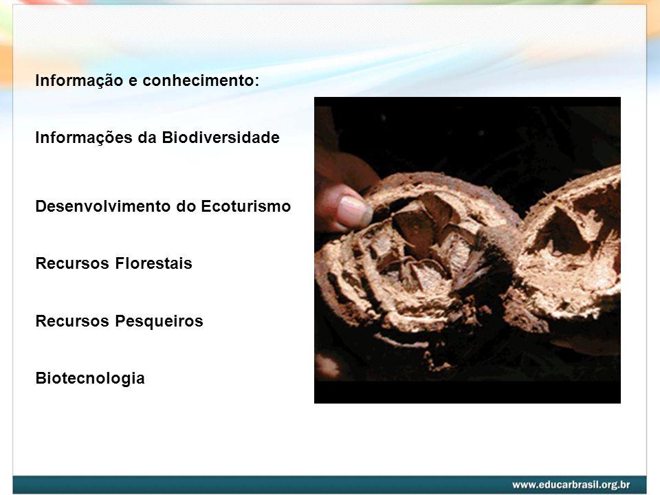 Informação e conhecimento: Informações da Biodiversidade Desenvolvimento do Ecoturismo Recursos Florestais Recursos Pesqueiros Biotecnologia