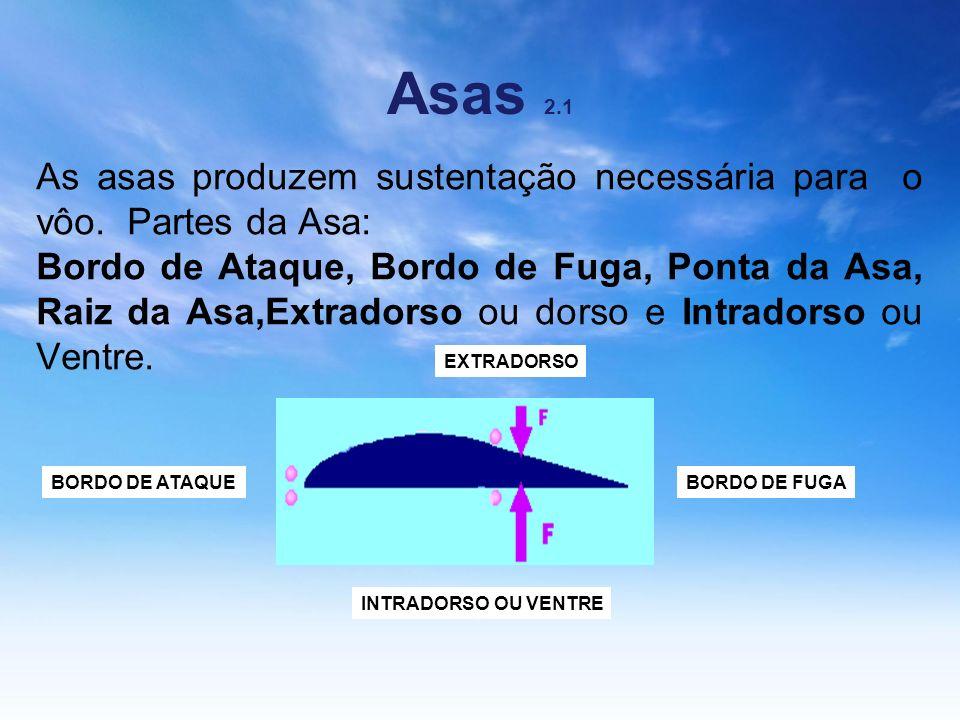 Asas 2.1 As asas produzem sustentação necessária para o vôo. Partes da Asa: Bordo de Ataque, Bordo de Fuga, Ponta da Asa, Raiz da Asa,Extradorso ou do