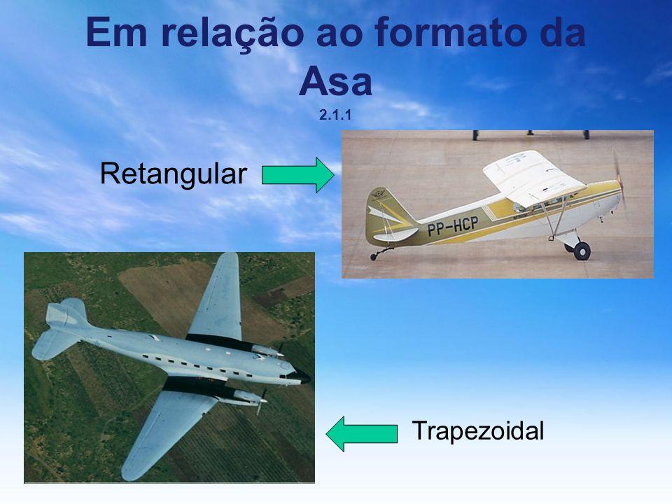 Em relação ao formato da Asa 2.1.1 Retangular Trapezoidal