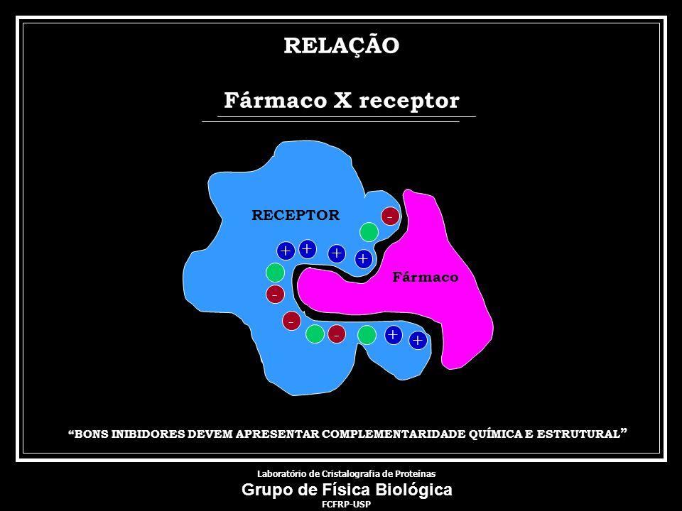 Laboratório de Cristalografia de Proteínas Grupo de Física Biológica FCFRP-USP Fármaco RECEPTOR - + + - + + - - RELAÇÃO Fármaco X receptor BONS INIBID