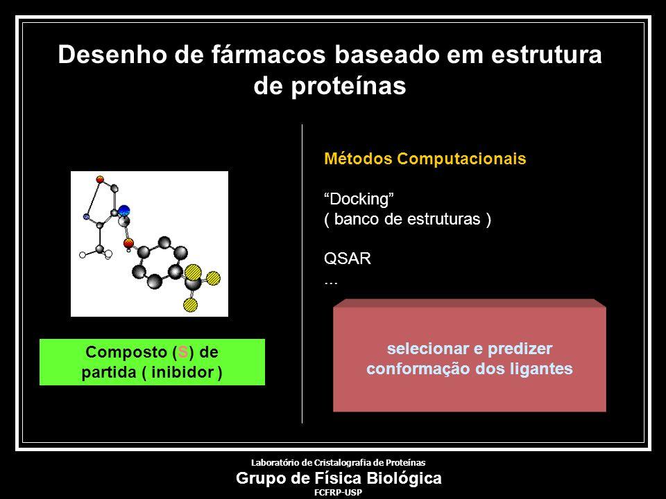 Desenho de fármacos baseado em estrutura de proteínas Composto (S) de partida ( inibidor ) selecionar e predizer conformação dos ligantes Métodos Comp