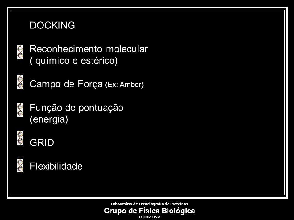 DOCKING Reconhecimento molecular ( químico e estérico) Campo de Força (Ex: Amber) Função de pontuação (energia) GRID Flexibilidade Laboratório de Cris