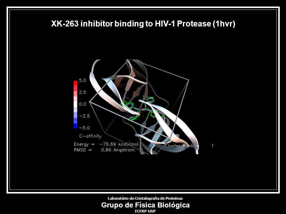 Laboratório de Cristalografia de Proteínas Grupo de Física Biológica FCFRP-USP XK-263 inhibitor binding to HIV-1 Protease (1hvr)