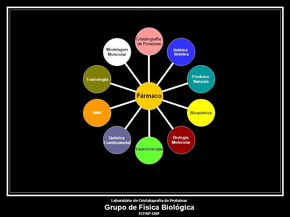 Laboratório de Cristalografia de Proteínas Grupo de Física Biológica FCFRP-USP