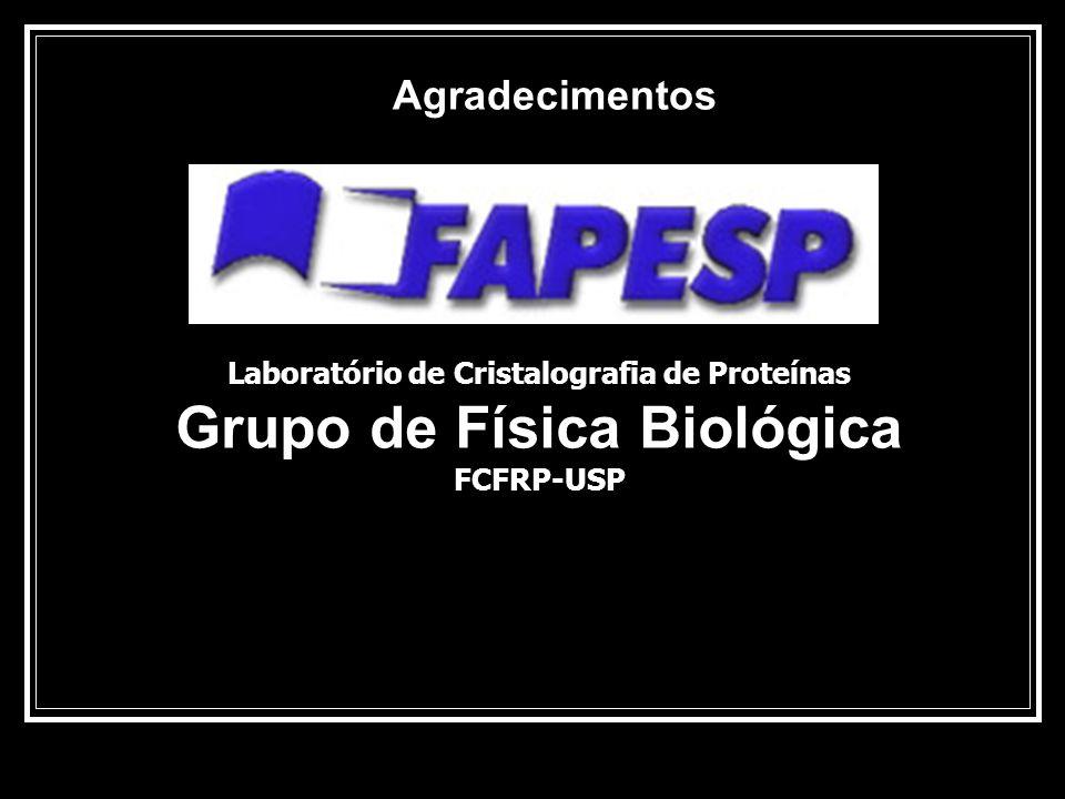 Agradecimentos Laboratório de Cristalografia de Proteínas Grupo de Física Biológica FCFRP-USP