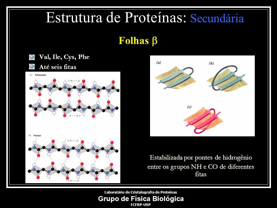 Val, Ile, Cys, Phe Até seis fitas Estabilizada por pontes de hidrogênio entre os grupos NH e CO de diferentes fitas Laboratório de Cristalografia de P
