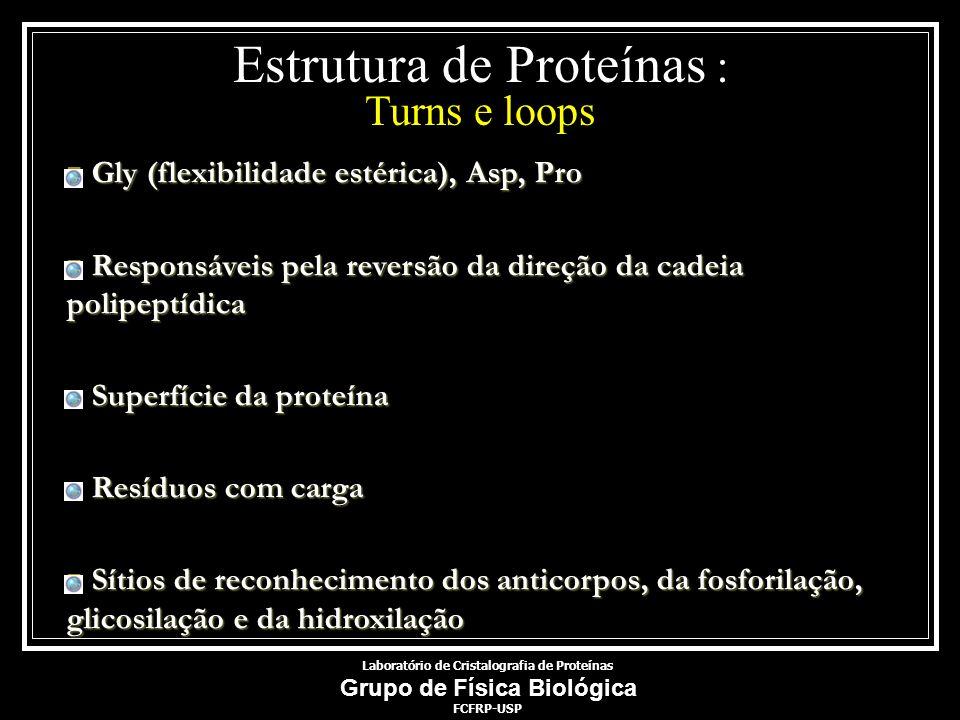 Estrutura de Proteínas : Turns e loops Gly (flexibilidade estérica), Asp, Pro Gly (flexibilidade estérica), Asp, Pro Responsáveis pela reversão da dir